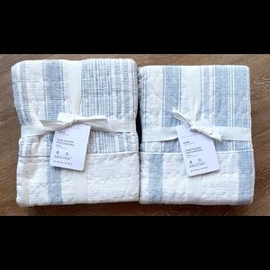 Set of 2 Pottery Barn Hawthorn Quilted Euro Shams
